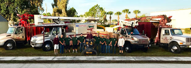 Team photo of Tim's Tree Service in Cape Coral, FL.