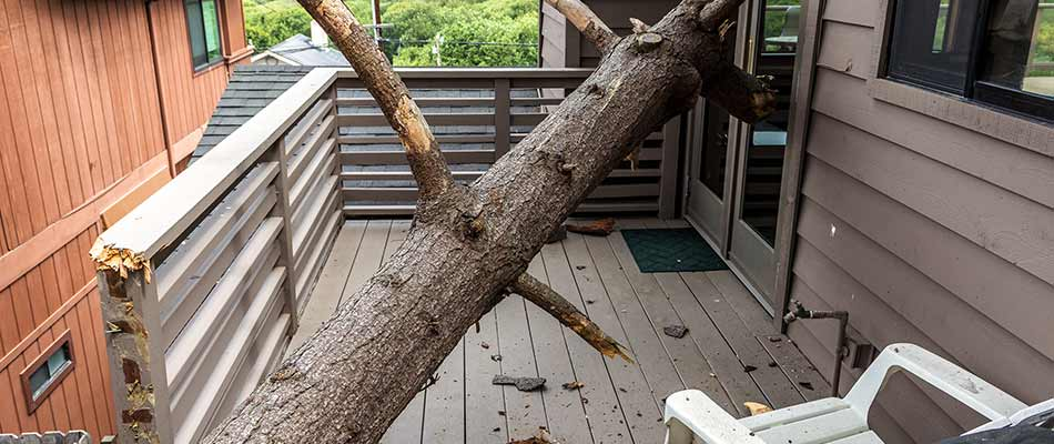 Tree damage to a home and patio deck near Cape Coral, FL.