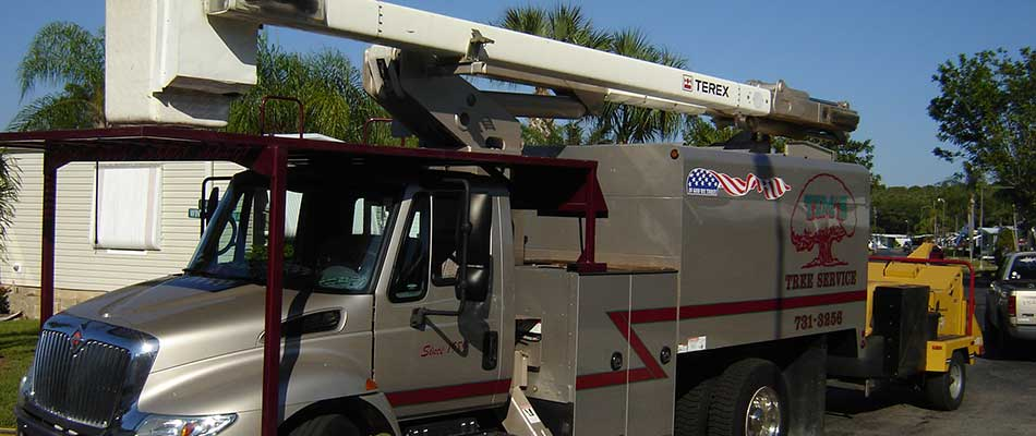 Tim's Tree Service bucket truck in Cape Coral, FL.