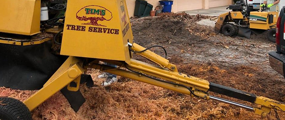 Using our stump grinder to remove a large tree stump at a business in Fort Myers.