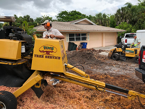 Our certified and insured tree company servicing a property in Cape Coral, FL.